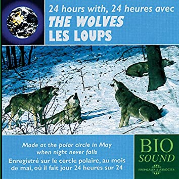 24 Hours with the Wolves - Avec les loups
