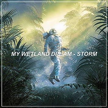 My Wetland Dream - Storm
