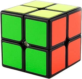 Ziyier G&E: Professor's Cube 2X2 Travel Set/ Chirdren logical training for 6 years old/ New Comer/ Easier Version