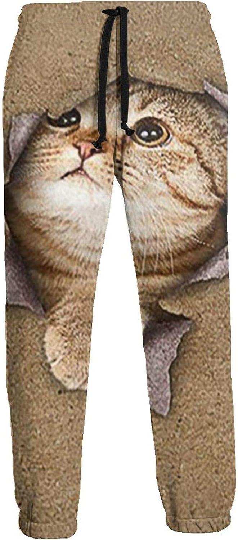 Tnbr51@ Max 65% OFF 100% Cotton Max 72% OFF Running Pants for Men's Kitten S Men Casual