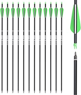 Yls Archery 26/28/30Inch Carbon Arrow Practice Hunting Arrows with100 Grain Removable Tips for Compound & Recurve Bow(Pack...