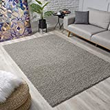 Impression Wohnzimmerteppich - Hochwertiger Öko-Tex zertifizierter Flächenteppich - Solid Color Teppich Hellgrau - Größe 80x150