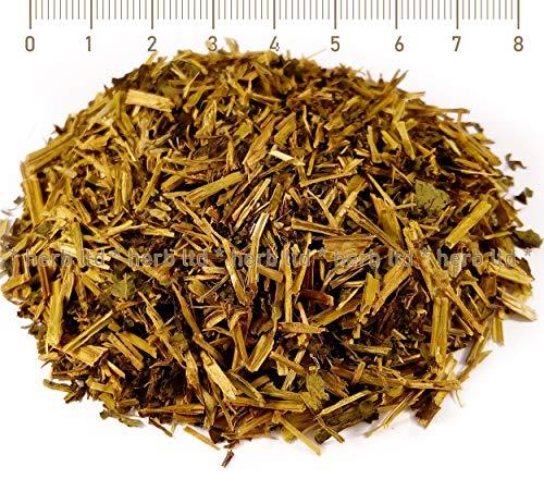 Beikal-Helmkraut Wurzel, Geschnitten Blatter, Scutellaria Baicalensis, Kräuter Stängel