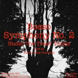 Symphony No. 2 'Under the Trees' Voices': Symphony No. 2 'Under the Trees' Voices': V. Finale, presto, Between men and trees (Live)