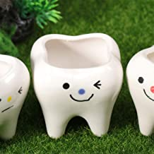 Garneck Vaso de flor de cerâmica com 3 dentes para suculentas, vaso de cacto, mini dente de grama, suporte de flor para ca...