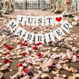 Just Married Girlande Vintage Rustikal Wimpelkette Banner mit Seil Hochzeitsgirlande als Deko für Hochzeit Fest Party Brautdusche Junggesellinnenabschied oder Foto Photo Booth Fotografie - 8