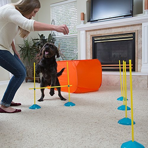 Outward Hound ZipZoom Indoor Dog Agility Training for Dogs