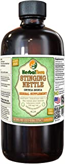 Stinging Nettle (Urtica Dioica) Glycerite, Organic Dried Leaves Alcohol-Free Liquid Extract (Brand Name: HerbalTerra, Proudly Made in USA) 32 fl.oz (0.95 l)