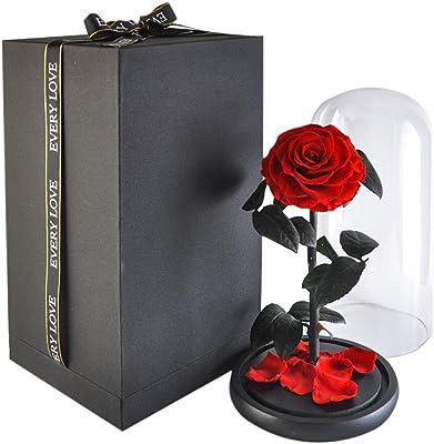 ハンドメイドPreserved Fresh Flowerローズwith、美しいガラスのカバー、。ギフトボックス、女性のためのギフト、彼女、妹、ガールズ、叔母、母の日、バレンタインの日、記念日、誕生日、結婚を含ま L レッド