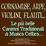 Cornamuse, arpe, violini, flauti... Le più belle canzoni tradizionali di musica celtica.....