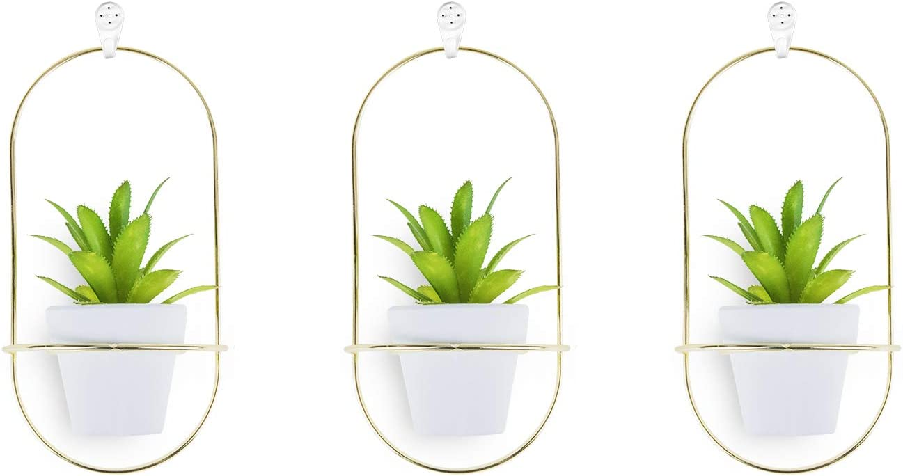 Choice 3 Max 66% OFF Set Hanging Wall - Decor Modern Planters