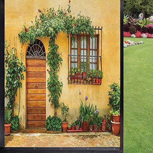 Película de ventana de jardín estática, Still Life Photo of Old House's Interior Floral Planrs and Door Vidrieras para el hogar o la oficina, extraíble, naranja pálido, verde helecho 60 x 90 cm