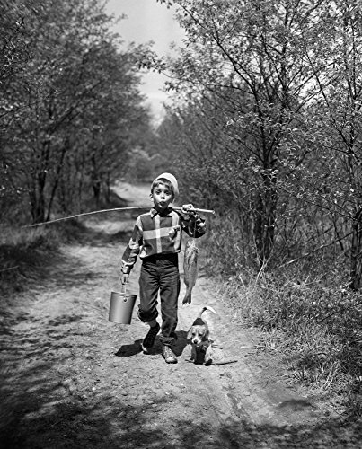 Posterazzi GLP469052LARGE Poster Print Collection 1950S Boy With Beagle Puppy Walking Down Country Road Whistling Carrying Fishing Pole Pail And Fish Print By Vintage,  Multicolored