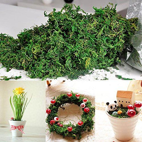 Musgo seco Kungfu Mall con flores secas, tipo liquen de los renos, para decoraciones, cestos y guirnaldas