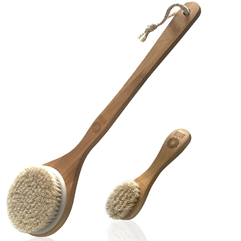 Body and Face Brush Set, Perfect for Dry Brushing, Back Brush Facial Scrub Skin Brush, Bath and Shower Exfoliating Brush With Soft Natural Horse Bristles, Great For Dead Skin Remover for Men Women