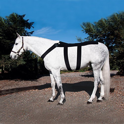 Ice Horse Back Blanket for Equine Therapy - Comes with 10 Ice Packs Inserts
