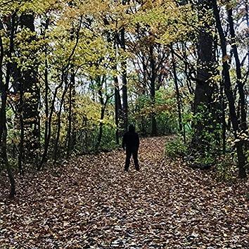 Autumn's Spell