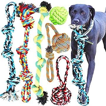 Hundeseilspielzeug für Hunde - 6er Pack große Hundeseile. 2 x 61-cm-Seil mit 3 Knoten, 4-Knoten-Seil, 10,2-cm-Seilball, Griffseil mit angebrachtem Ball, 10,2-cm-Seilball mit Griff Zahngesundheit: Zahnreinigungsspielzeug. Bekämpfen Sie die Bildung von...
