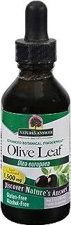 Natures Answer OleoPein Olive Leaf Alcohol Free - Gluten Free - 2 fl oz (Pack of 2)