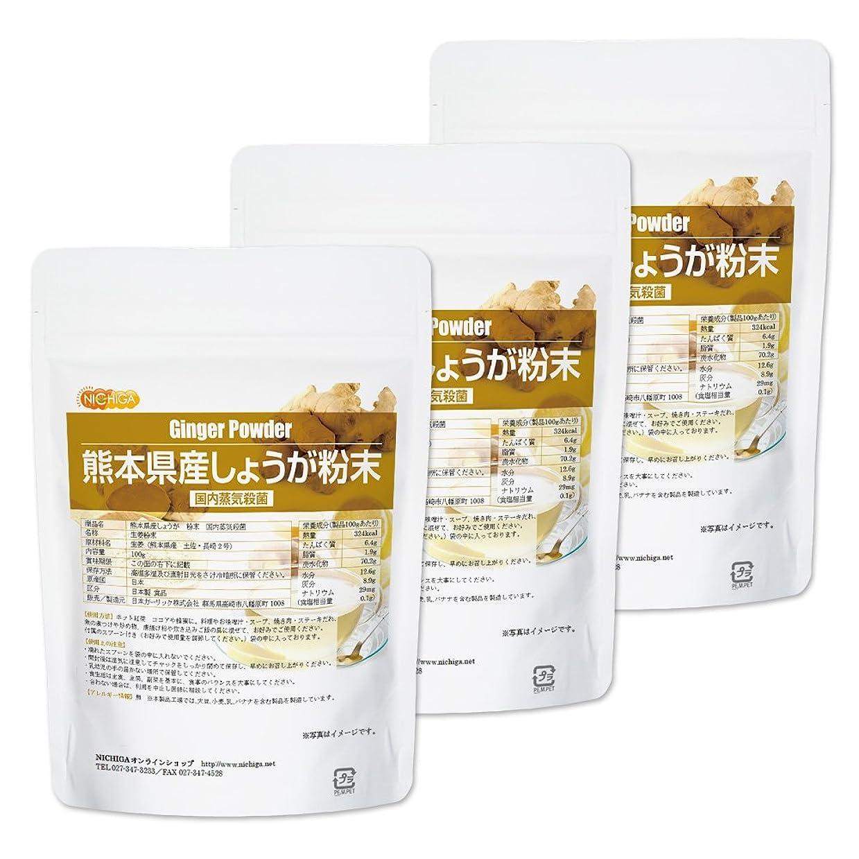 租界伝染病瞬時に熊本県産しょうが 粉末 100g×3袋 国内蒸気殺菌 [06] 生姜パウダー100% NICHIGA(ニチガ)