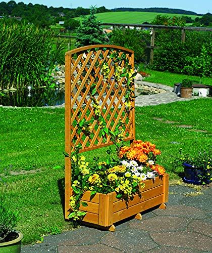 Promadino -  Rankkasten Flora