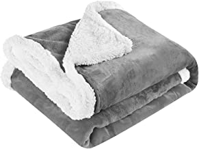 LANGRIA Luxury Sherpa Flannel Fleece Reversible Blanket Lightweight Extra Soft Skin-Friendly Fabric All Seasons Comfort Blanket for Couch Sofa Easy Care (50