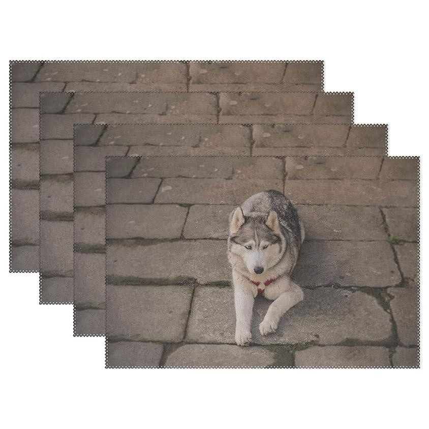 流行災難些細なRhスタジオ場所マット犬かわいい動物自然哺乳動物プレートパッドセットの4洗える耐熱汚れ耐性食べるテーブルマットホームディナー装飾