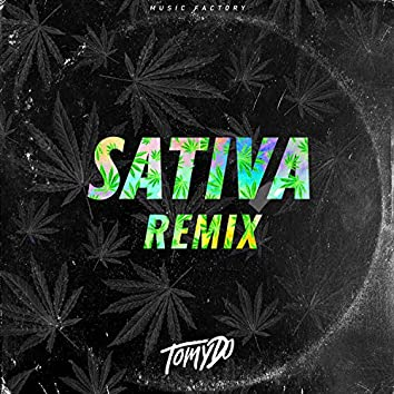 Mega Sativa + Perreo (Remix)
