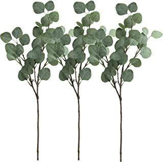 Supla 3 Pcs Artificial Silver Dollar Eucalyptus Leaf Spray in Green 25.5