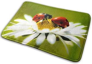 DENETRI DYERHOWARD Bath Mat Funny Ladybug Non Slip Bath Rug Washable Bathroom Soft Kitchen Floor Door Mat