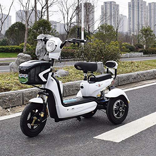 Adulto Scooter móvil eléctrico de Tres Ruedas Scooter Verde Bicicleta ecológica 48V20A,White