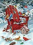 Cobblehill 80069 1000 pc Adirondack Birds Puzzle, Various