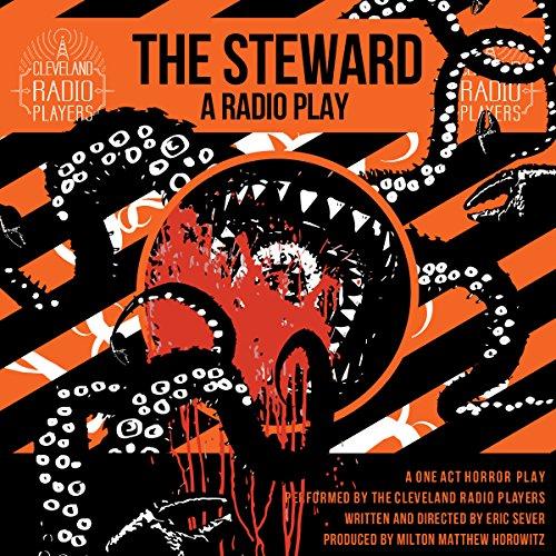 The Steward audiobook cover art