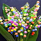 Kisshes Seedhouse - 100pcs Muguet Rose Multicolore Graines de Fleurs, Résistant...