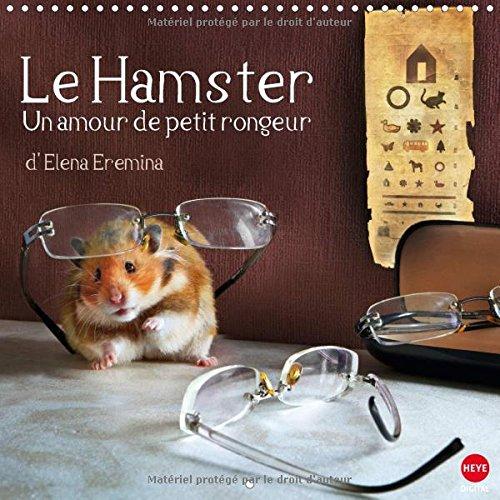 Le hamster un amour de petit rongeur : La marrante petite famille Hamster : Sans roue, à quoi s'affaire-t-elle ? Calendrier mural 2016
