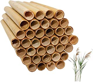 Mason Bee Tubes Natural Reed Pipe bee hive Inserts Pollinating kit for bee House Blocks bee nest Home Craft Replacement Tu...