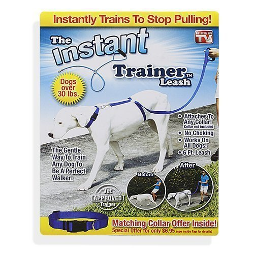 POPPEE Dog Leash Trains Dogs 30 Lbs Stop Pulling As Seen On Tv Dogwalk