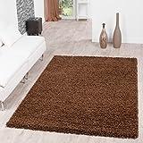 T&T Design Shaggy - Alfombra para salón, diferentes precios, varios colores, marrón, 300 x 400 cm
