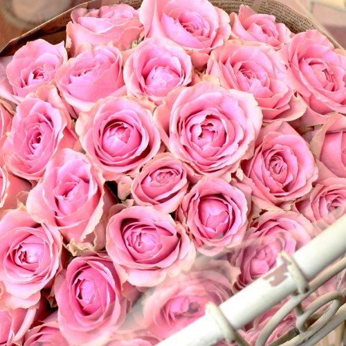 バラの花束 20本
