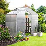 GRAVFORCE Greenhouse for Outdoor, Polycarbonate Walk-in Plant Greenhouse with Window for Winter, Garden Green House for Plants, 6 x 4 FT (Silver, 6'L x 4'W x 6'H)