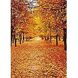 Fondos de fotografía de Bosque de otoño Fondo de fotografía de Puente de Madera Impresora de Tela de Vinilo 3D para Foto de Estudio A4 5x3ft / 1.5x1m