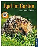 Igel im Garten (Mein Garten): Helfen Pflegen Beobachten