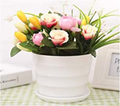 CHENTAOCS Flower Pot, Resin Plastic Round Flower Pot, Fleshy Imitation Ceramic Tabletop Color Indoor Balcony Small Flower Pot, More Colors (Color : White, Size : 11 * 10cm)