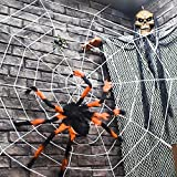 FUN LITTLE TOYS Outdoor Halloween Decorations, Scary Spider with Spider Web, Best for Halloween Party Decorations, Party Favors