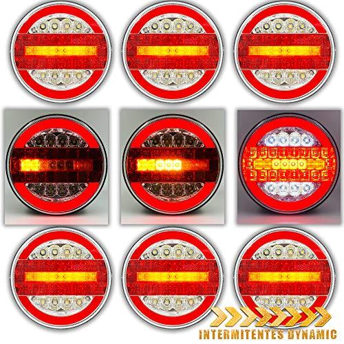 PACK 6 PILOTOS LED NEON REDONDOS 4 FUNCIONES PARA CAMION REMOLQUE INTERMITENTES DINAMICOS 12V 24V HOMOLOGADOS