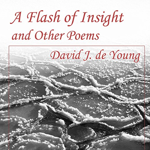 A Flash of Insight and Other Poems cover art