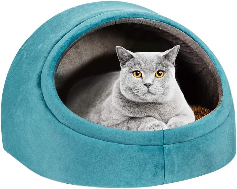 Autokcan Cat Beds for Indefinitely Indoor Hous Cats Washable Cute Fluffy Department store