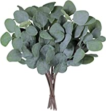 "Supla 10 Pcs Fake Eucalyptus Leaves Stems Bulk Artificial Silver Dollar Eucalyptus Leaves Plant in Grey Green 11.8"" Tall W..."