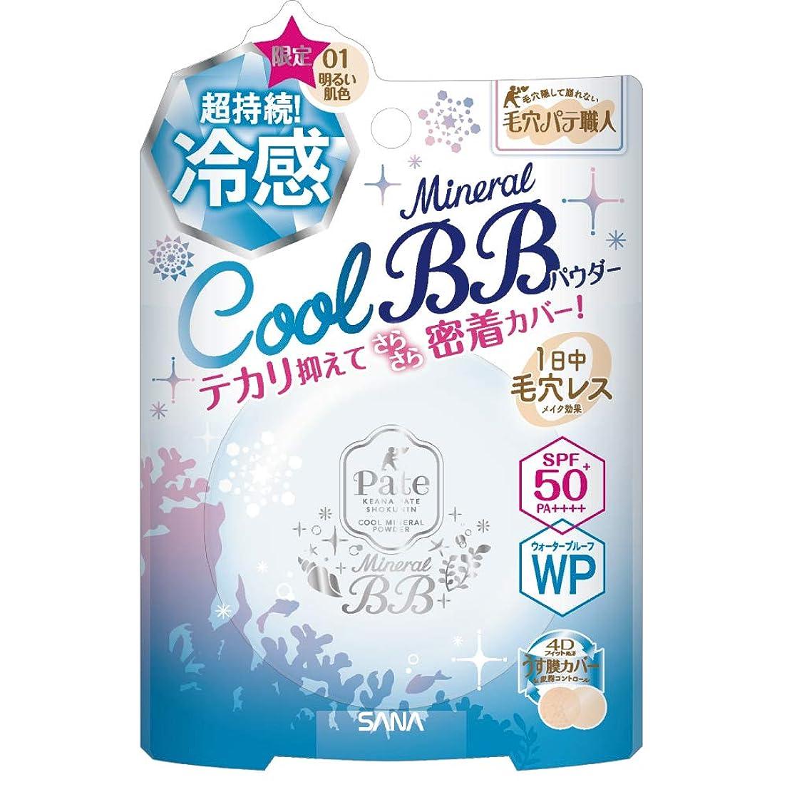 ハードウェア洗剤パネル毛穴パテ職人 ミネラルBBパウダーCOOL 01 明るい肌色 ウォータープルーフ SPF50+ PA++++