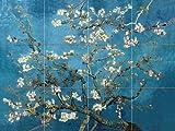 FlekmanArt Blossoming Almond by Van Gogh Vincent - Art Ceramic Tile Mural 24' W x 18' H (6x6 Tiles), Kitchen Shower Bath Backsplash